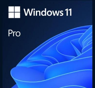 Microsoft Windows 11 Pro